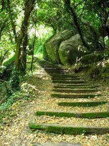 Воспитание души. Путь восхождения