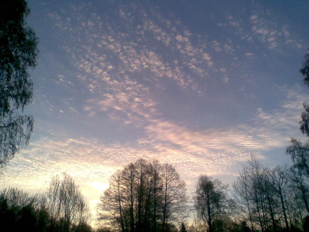 Облака рассвета