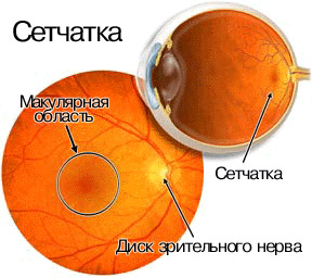 Восстановление дистрофии сетчатки